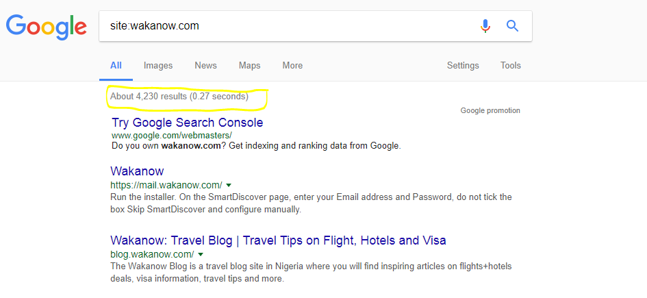 SEO-companies-in-nigeria-SEO-Audit-Site-Command-Example
